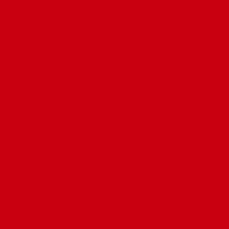U17005 Karminowy