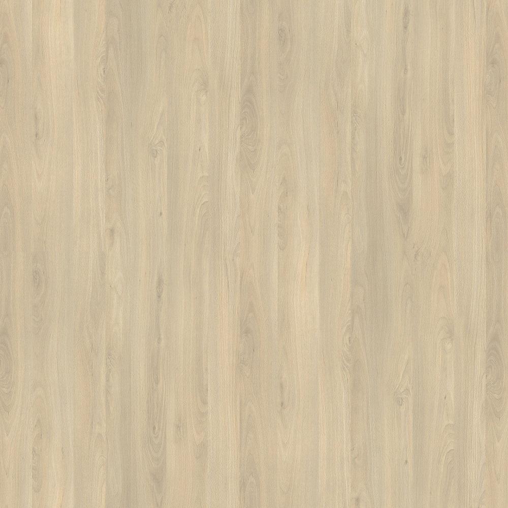 R24029 R5829 Buk Fiord Jasny
