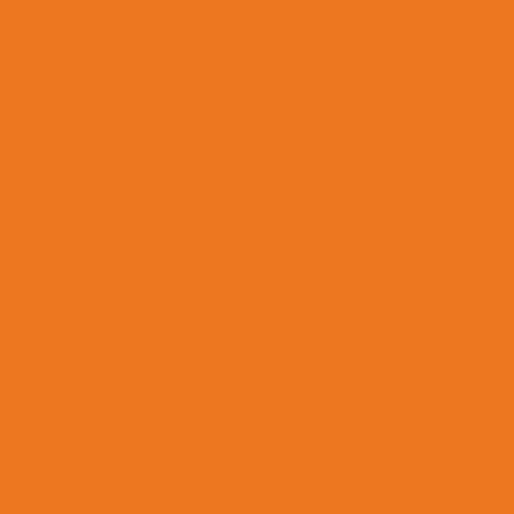 U16010 U1667 Orange