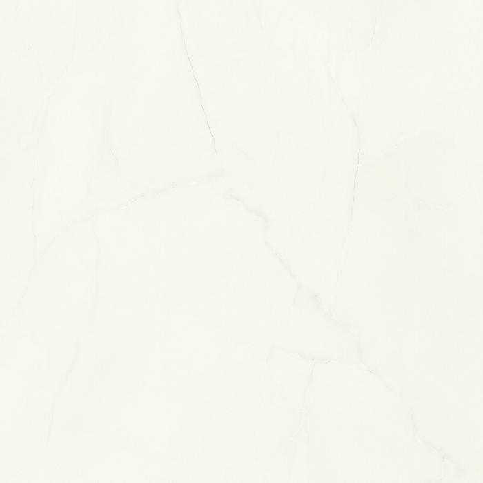 S63045 India White