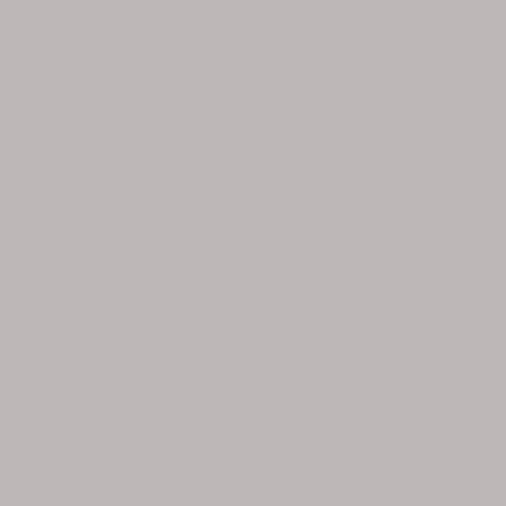 U12044 Szarość Delfina